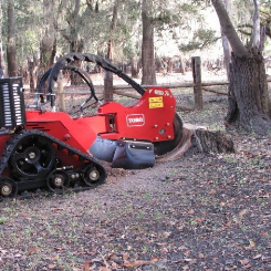 tree stump removal cost Spring Hill FL